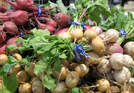 Turnips Nutrition Information