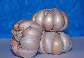 What Are the Benefits of Raw Garlic for Candida?