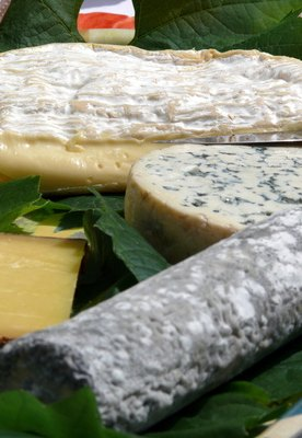 Nutritional Benefits of Blue Cheese