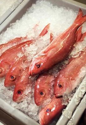 Nutrition of Fried Red Snapper Fish