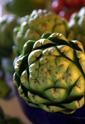 What Are the Benefits of Artichoke Leaf Extract for Weight Loss?