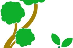 A tree symbol is used on a coat of arms to represent new life sprouting from old life.