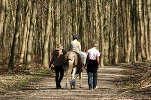 Many consider horseback riding good physical, mental and emotional therapy.