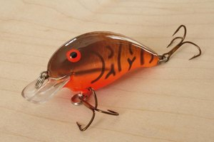 Crankbaits like this one, with its short bill, are designed to swim near the surface.