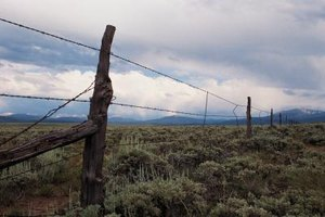 A close-up of a barbed wire fence around open land in the west.