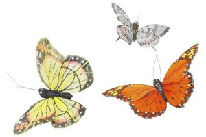 Use a simple toilet paper tube and other craft items to make your own butterfly model.