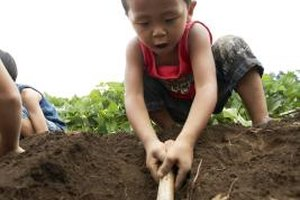 Digging in the dirt is usually safe; making tunnels is not.