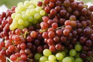 rebajar acido urico ultra rapido frutas que no tengan acido urico