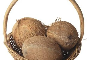 Coconut is a staple of the Rastafarian diet.