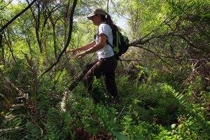 Careers in marine and wildlife biology?