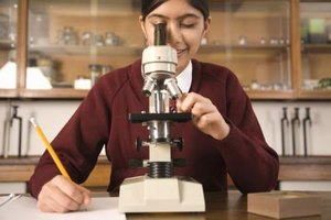 The light microscope is just one of the microscopes used in microbiology.