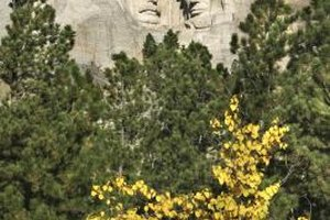Crooked Creek RV Park se localiza a menos de 10 millas de Mt. Rushmore.