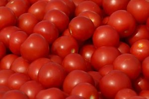 The United States produces some $2 billion in tomatoes annually.
