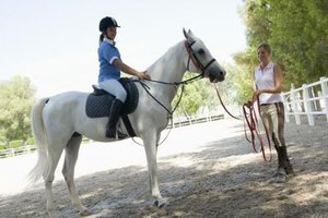 Equine therapists work with clients of varying physical and emotional abilities.