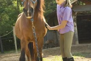 Equine therapy is used at many behavior camps including New Haven, Sunrise and Trinity.