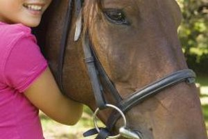 Kids can hone their horse-riding skills in Woodside.
