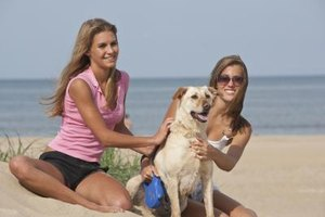 Watchful guard dogs can help keep teens safe.