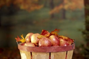 Take advantage of apple season, which runs from August through November, to buy fresh apples locally.