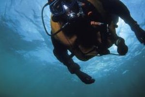 Scuba diving careers can be lucrative for experienced divers.