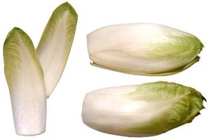 Enjoy chicory leaves in a mixed green salad.