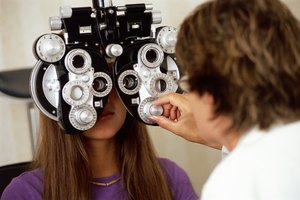 Should I Major in Biology or Chemistry to Enter Optometry School?
