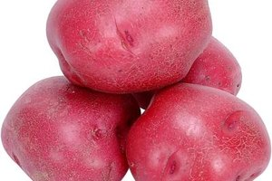 Select firm red potatoes free of cracks, soft spots or discolored areas.