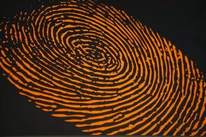 Crime scene and lab analysts match fingerprints with suspects.