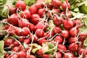 Radishes are sweet and mild when cooked.