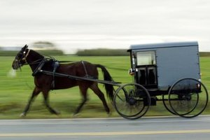 Mennonites sometimes use the same horsedrawn carts as the Amish to transport a casket to the church or cemetery.