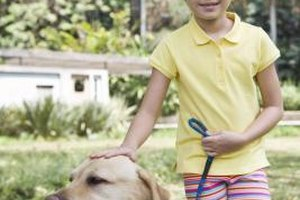 Teach your child to exchange teasing for loving behavior with the dog.