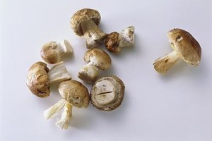 Button mushrooms are the most popular among American shoppers.