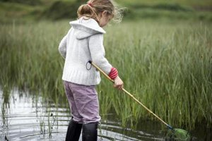 Kids can explore St. Marys' salt-water marshes.