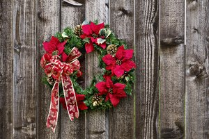 A List of Christmas Flowers