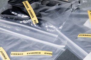 Top Forensic Criminology Schools