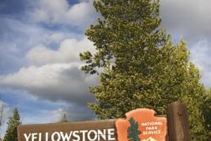 Yellowstone National Park is a great place to visit with kids.