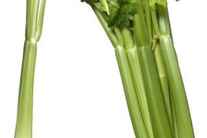 Cut celery right before you use it to increase its storage life.