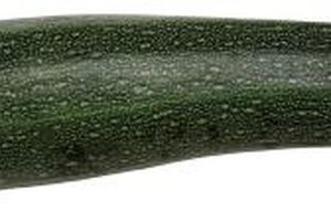 Many diners enjoy the taste of sauteed zucchini and onions served at Japanese hibachi restaurants.