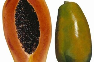 La papaya es un antihistamínico natural.