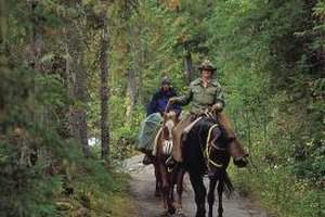 Midlevel park rangers may find themselves leading tours.