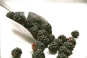 Dewberries resemble blackberries, but they have larger seeds.