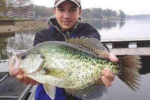 Attract Crappies