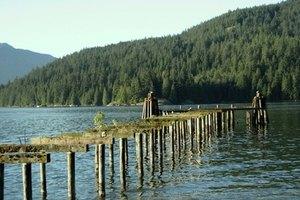 cheap canadian fishing trips gone outdoors your