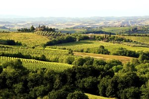 Interesting Facts About Tuscany in Italy