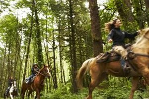Several companies in Tioga County offer trail rides.