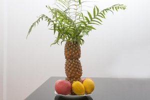 How to Make a Palm Tree Decoration by Using Pineapples