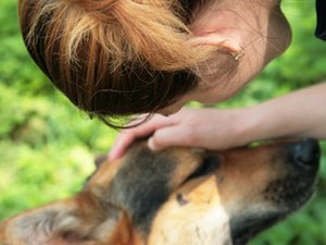 Health Benefits From Pet Therapy