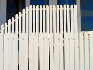 Temporary Fencing for Dogs
