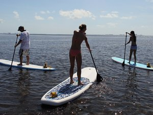 Types Of Paddleboards