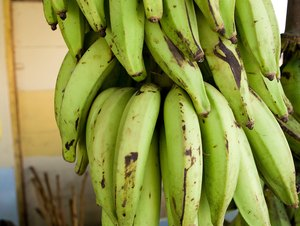 How to Bake Plantain