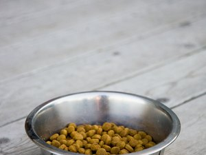 Artificial Coloring in Dog Food